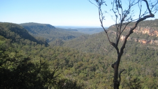 Mook mook-Aussichtspunkt im Blackdown Tableland Nationalpark
